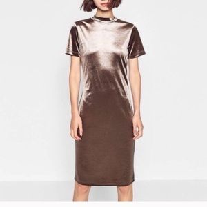 Nwot Zara metallic velvet dress